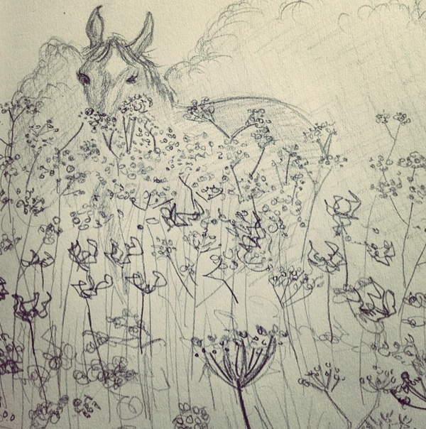 horse in cow parsley field pencil drawing