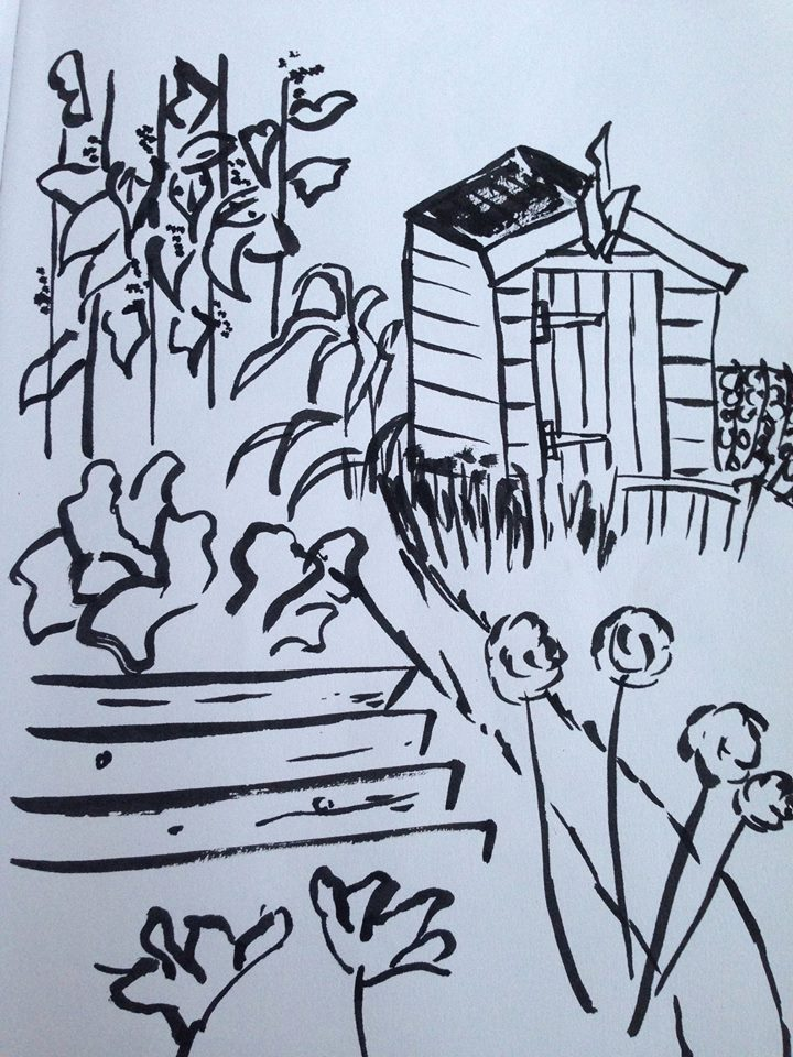 allotment sketch with ink