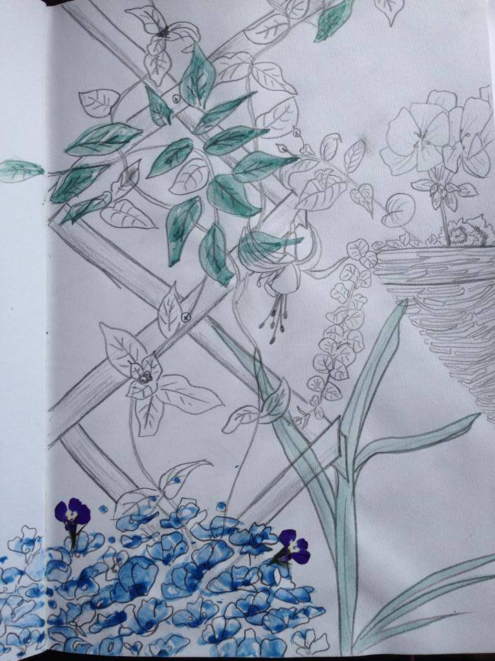 garden trellis drawing