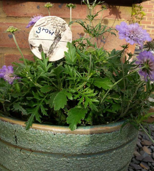 ceramic grow decoration