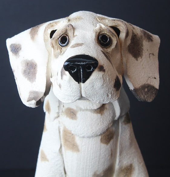 virginia dowe-edwards hound