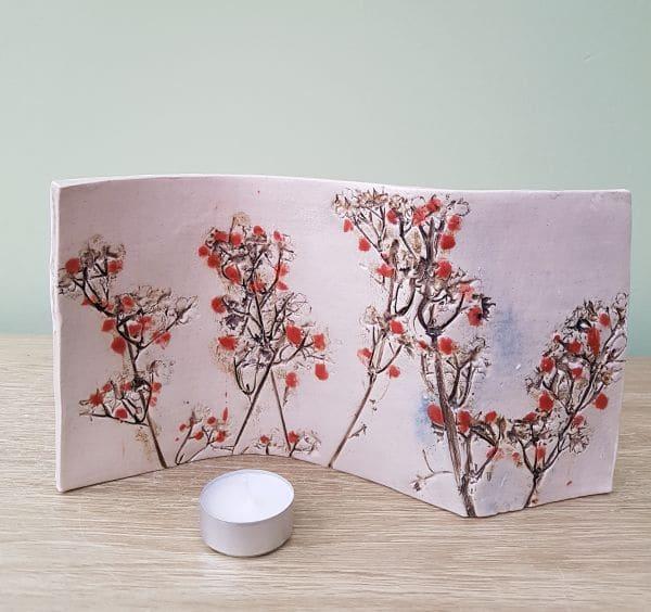 cherry blossom curve