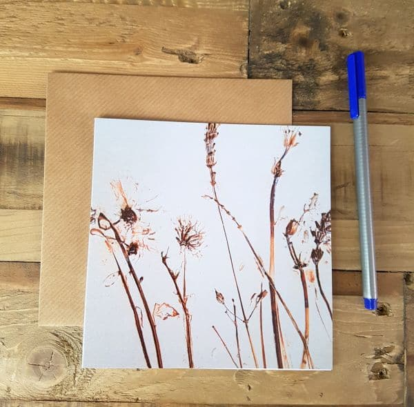 natural meadow card