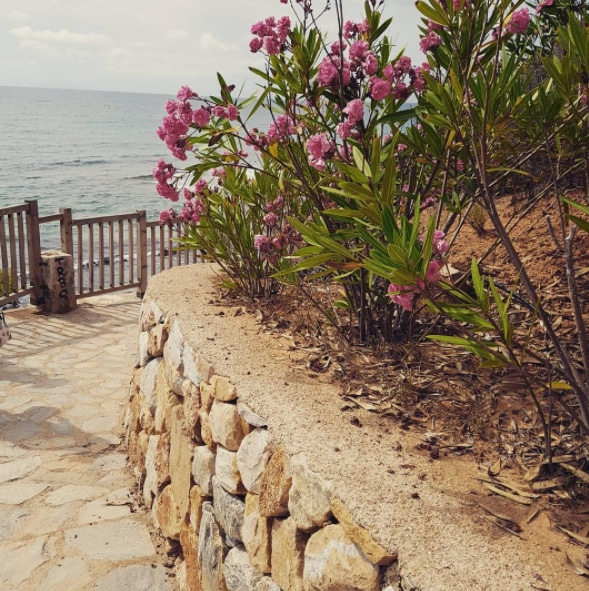spanish pathway to beach