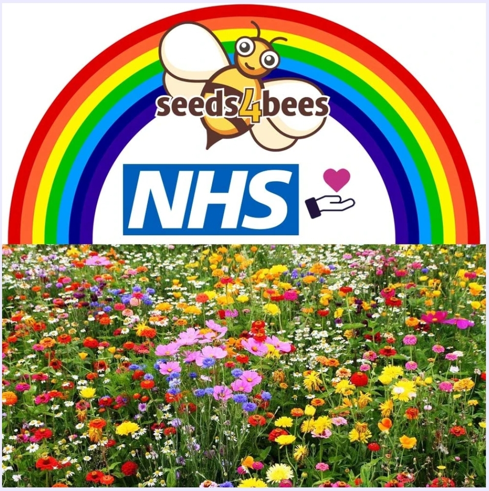 seeds 4 bees